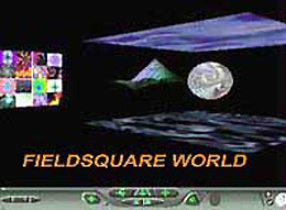link to 'Fieldsquare' world